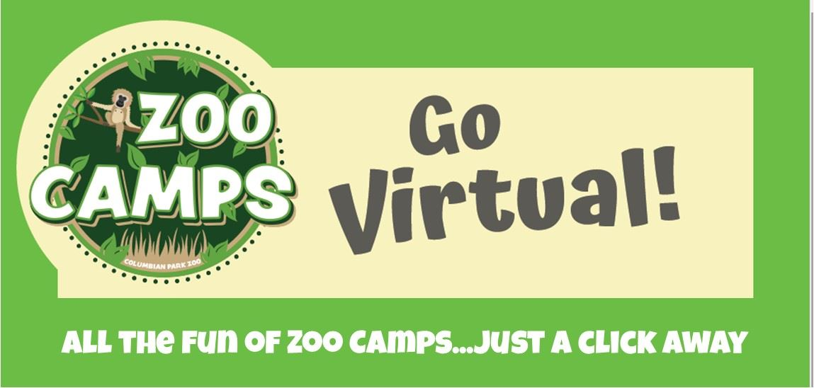 Virtual Camps logo image