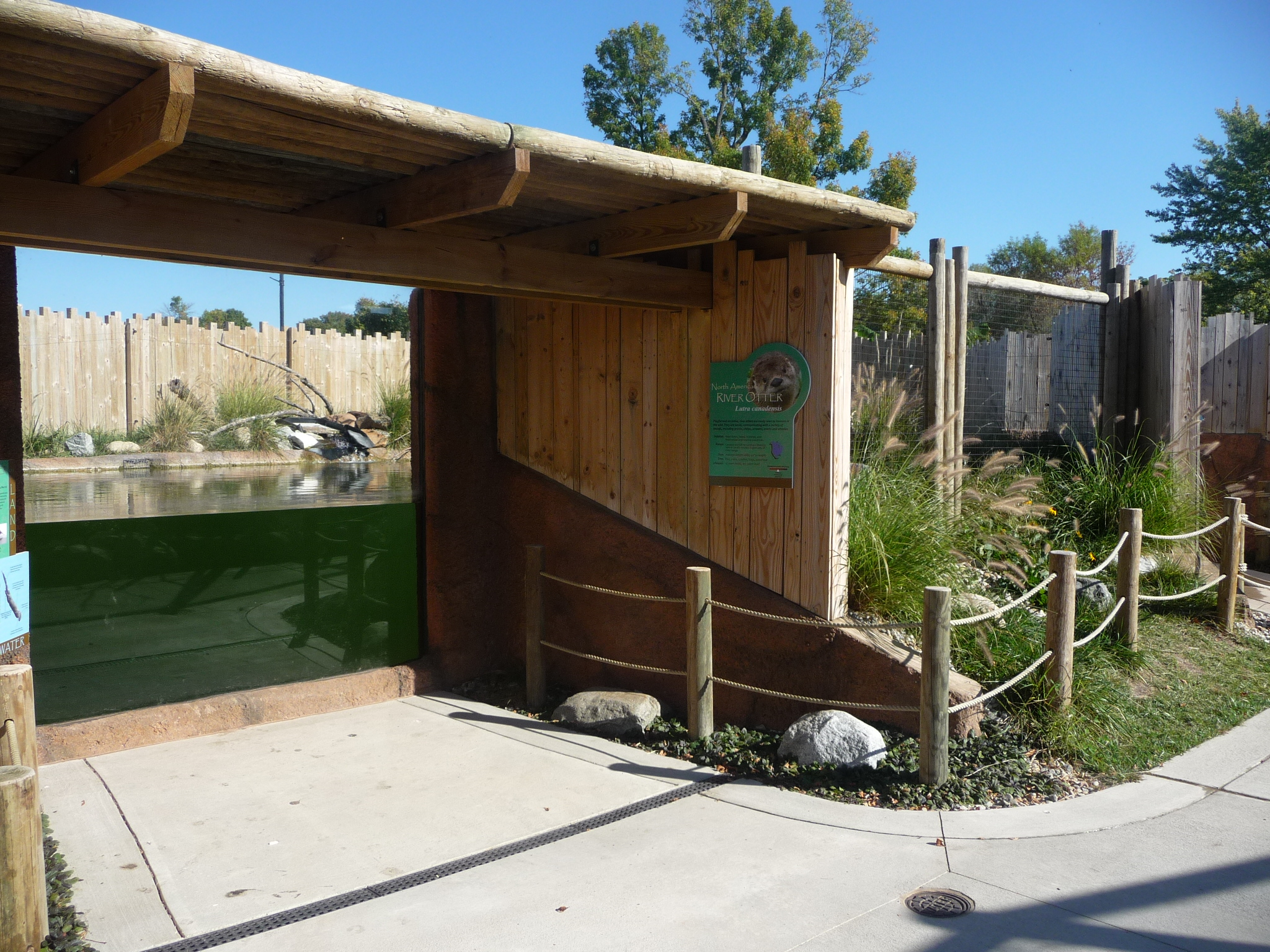 River Otter exhibit with front viewing